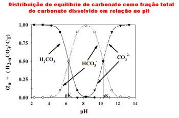Gráfico da distribuição do equilíbrio do Carbono