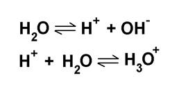 Esqução do equilíbrio químico