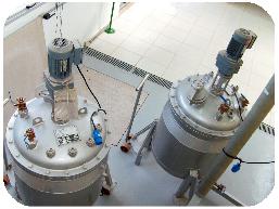 Reatores de Polimerização